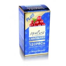 Cranberry Plus 120 PACs maxima concentración 2 cap. al día  a base de extracto seco de arándano americano