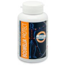 Boswelia protect -  antiinflamatorio articular efecto analgesico